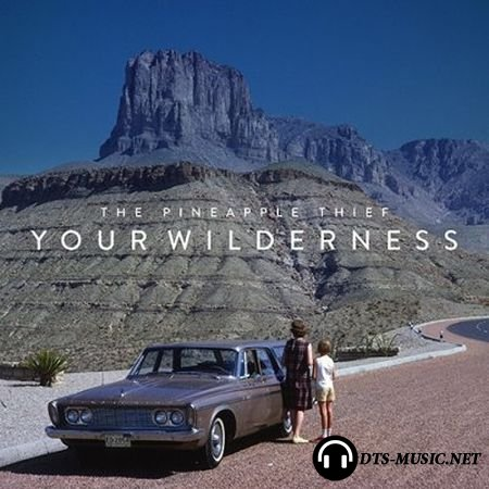 The Pineapple Thief - Your Wilderness (2016) DVD-Audio