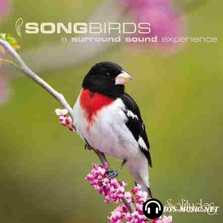 Dan Gibson's Solitudes - SongBirds: A Surround Sound Experience (2007) DTS 5.0 ( .wav+.cue )