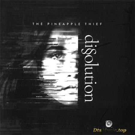 The Pineapple Thief - Dissolution (2018) DVDA