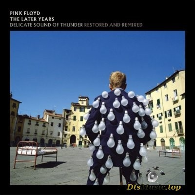 Pink Floyd - Delicate Sound of Thunder (2019) DTS 5.1